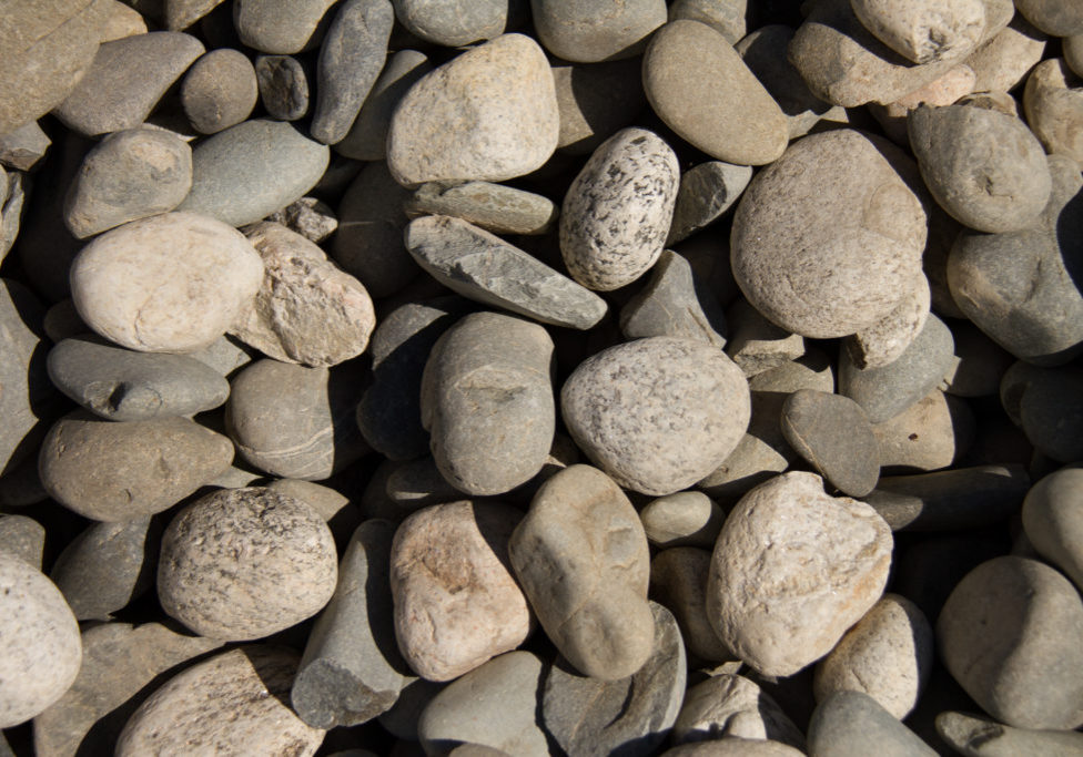Bulk products tall poppies landscape pool centre for Medium sized rocks for landscaping